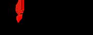icaew chartered accountants logo
